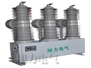 ZW-40.5 1250-31.5 户外柱上固封式永磁真空断路器